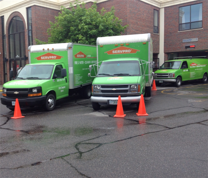 Three green SERVPRO vehicles in front of brick commercial building with cones in front of the trucks.