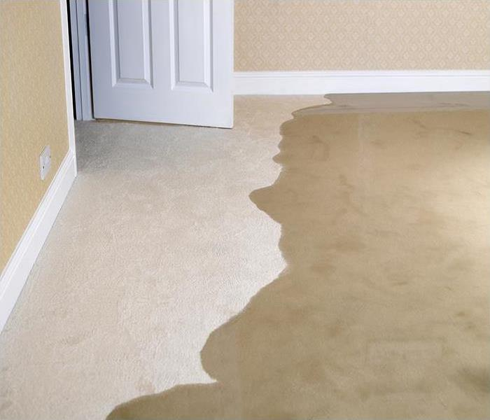 Water Damage Why Professional Restoration Is Better Than DIY Methods For Water Damage In Your Dublin Home