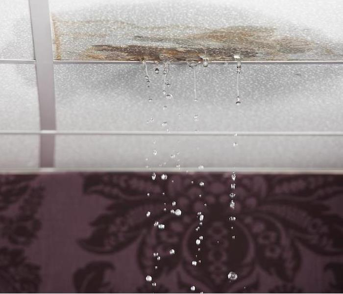 Water Damage How Water Damage in Keene Affects Residential Walls and Ceilings