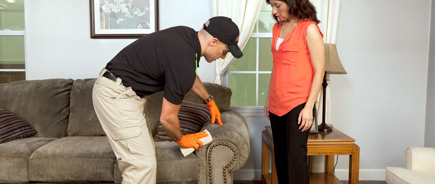 Keene, NH carpet upholstery cleaning